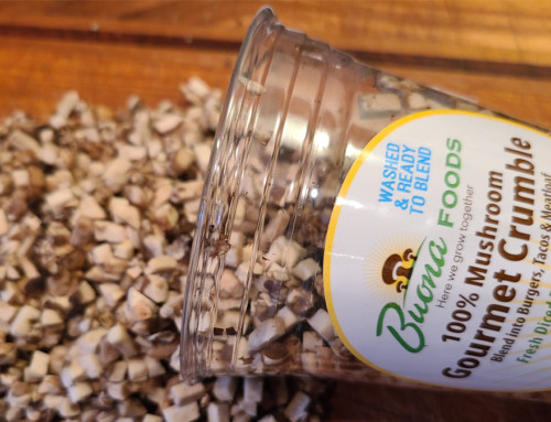 Introducing a New Way to Blend – Gourmet Crumble